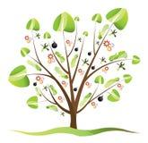 samochodowy drzewo Zdjęcia Stock