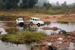 samochodowy hindus Zdjęcie Royalty Free