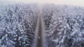 Samochodowy jeżdżenie na zimy wiejskiej drodze w śnieżnym lesie, widok z lotu ptaka zdjęcie wideo
