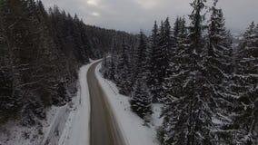 Samochodowy jeżdżenie na zimy wiejskiej drodze w śnieżnym lesie, widok z lotu ptaka od trutnia zdjęcie wideo