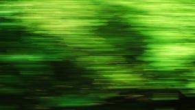 Samochodowy mknięcie na drodze przez zielonego lasu - 4K materiał filmowy