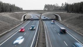 Samochody podróżuje na autostradzie w krajobrazie Pomysł transport, infrastruktura, architektura zdjęcie royalty free
