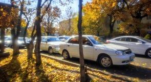 Samochody w jesieni obraz royalty free