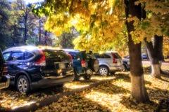 Samochody w jesieni zdjęcie stock