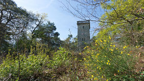Samois tower in Fontainebleau forest Stock Photo