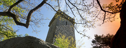 Samois tower in Fontainebleau forest Stock Image