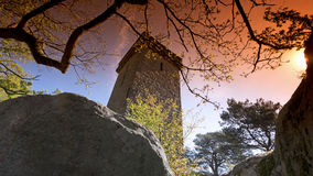 Samois tower in Fontainebleau forest Royalty Free Stock Photos