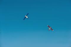 2 samolot Fotografia Stock