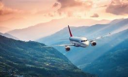 Samolot lata nad zielonymi wzgórzami przeciw górom Obraz Royalty Free