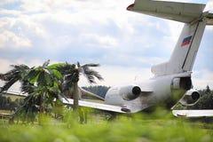 Samolot w dżungli Samolot lądował w zwartej roślinności obrazy royalty free