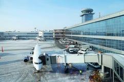 Samolot w lotniskowym Domodedovo Obraz Stock