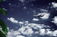 samolotowa palma Zdjęcia Stock