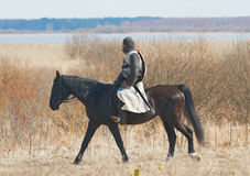 Ιππότης σε ένα τεθωρακισμένο καβάλλα σε ένα άλογο Στοκ Φωτογραφίες