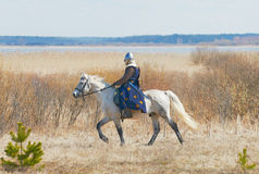 Knight in an armor astride a horse Royalty Free Stock Photography
