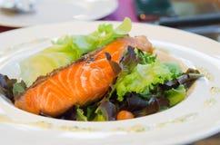 Samon salad Royalty Free Stock Image