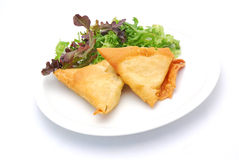 Samoosa com salada lateral Fotos de Stock