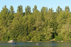 Samoreau lake in Fontainebleau forest Stock Images
