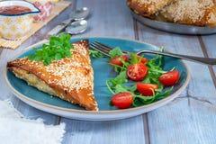 Samosas цыпленка с чатнями манго и свежим салатом стоковое фото rf