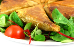 Samosas white at bottom. Samosas and salad on a plate, white copy space at the bottom Royalty Free Stock Photography
