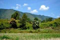 Samosir Island royalty free stock photography