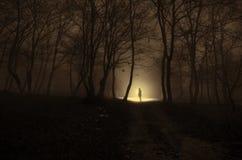 Samotna dziewczyna z światłem w lesie przy nocą lub błękit tonujący, Obrazy Stock