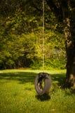 samotna huśtawkowa opony Fotografia Royalty Free