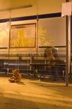 samotna lewica Zdjęcie Royalty Free