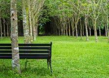 Samotna rocznik ławka w zielonego koloru ogródzie obraz stock