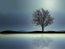 samotne drzewo ilustracji