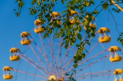 Samotne huśtawki w dziecka ` s parku Zdjęcie Royalty Free