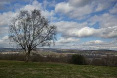 Samotni drzew spojrzenia nad szeroko otwarty wsią zdjęcia royalty free