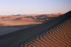 samotnie pustynię Obrazy Royalty Free