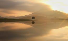 Samotnie w jeziorze Obraz Royalty Free