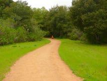 samotność dystansowa długo biegacz Fotografia Royalty Free