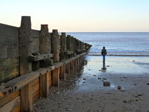 Samotność gapi się out morze obraz royalty free