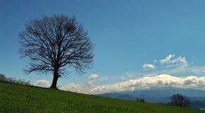 Samotności góra Obraz Royalty Free