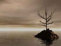 samotny Zdjęcie Royalty Free