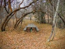 Samotny drewniany Pykniczny stół w opóźnionym spadek panoramy lesie przez drzew na Żółtym rozwidleniu Różanym jarze i Wlec w Oqui Zdjęcie Royalty Free