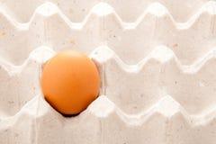 Samotny jajko Fotografia Stock