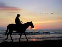 samotny jeździec Obrazy Royalty Free