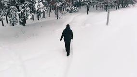 Samotny mężczyzny odprowadzenie Przez śniegu zdjęcie wideo