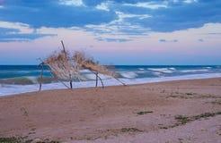samotny na plaży Zdjęcie Royalty Free