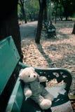 Samotny niedźwiedź Zdjęcie Stock