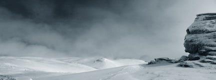samotny sfinx obraz stock