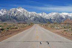 Samotny sosna szczyt i Wschodni sierra zdjęcia royalty free