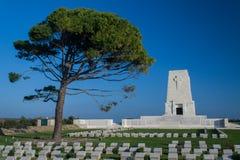 Samotny Sosnowy cmentarz zdjęcia royalty free