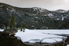 Samotny Sosnowy jezioro, Skalistej góry park narodowy Fotografia Stock