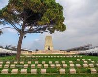 Samotny Sosnowy pomnik, Gallipoli Zdjęcie Stock