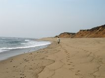 samotny spacer na plaży Fotografia Royalty Free
