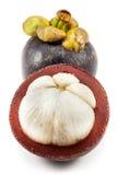 samotny tła owoc mangostanu stojaka biel Zdjęcia Stock